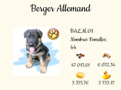 BAL.M.01-Berger_Allemand.png