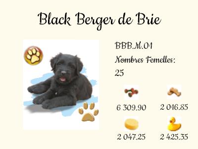 BBB.M.01-Black_Berger_de_Brie.png