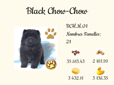 BCH.M.01-Black_Chow-Chow.png