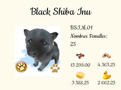 BSI.M.01-Black_Shiba_Inu.png