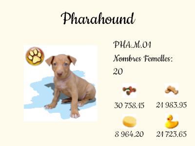 PHA.M.01-Pharahound.png