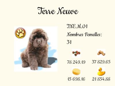 TNE.M.01-Terre_Neuve.png